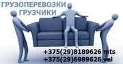 Услуги грузчиков в Минске - от 40 тыс/час. Грузоперевозки,  переезды,  г