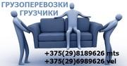 Грузоперевозки,  переезды,  грузчики. Услуги грузчиков Минск,  недорого.