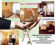 однокомнатная  квартира на сутки,  недели,    г. Жодино!+375299553545