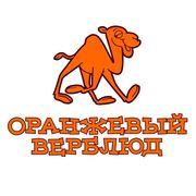 Продается интернет-магазин оранжевый верблюд с 12 летней историей